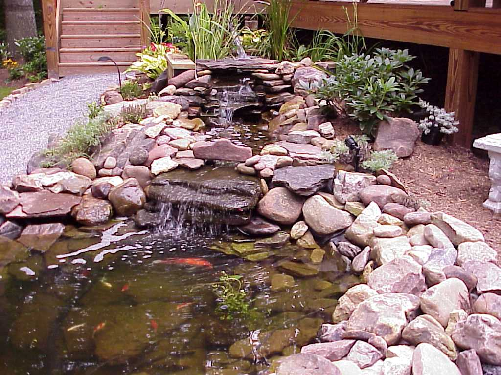 Uk water features adding a pond to your garden for Fishpond uk