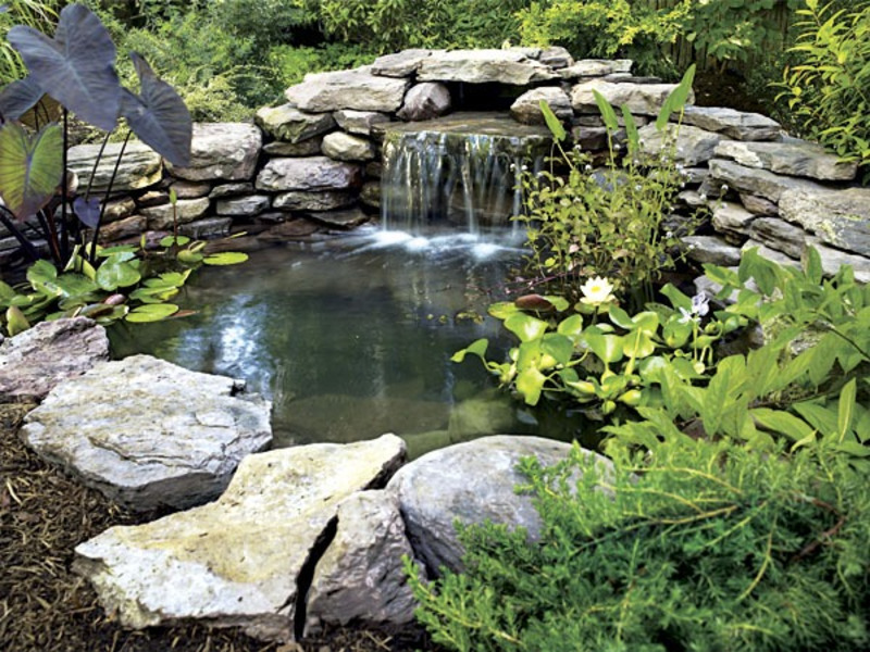 How to attract wildlife to your garden using ponds for Artificial koi fish for ponds